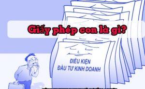 giay-phep-con-la-gi