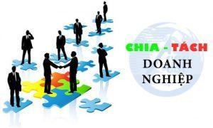 Tư-vấn-chia-tách-công-ty-tại-Nghệ-An